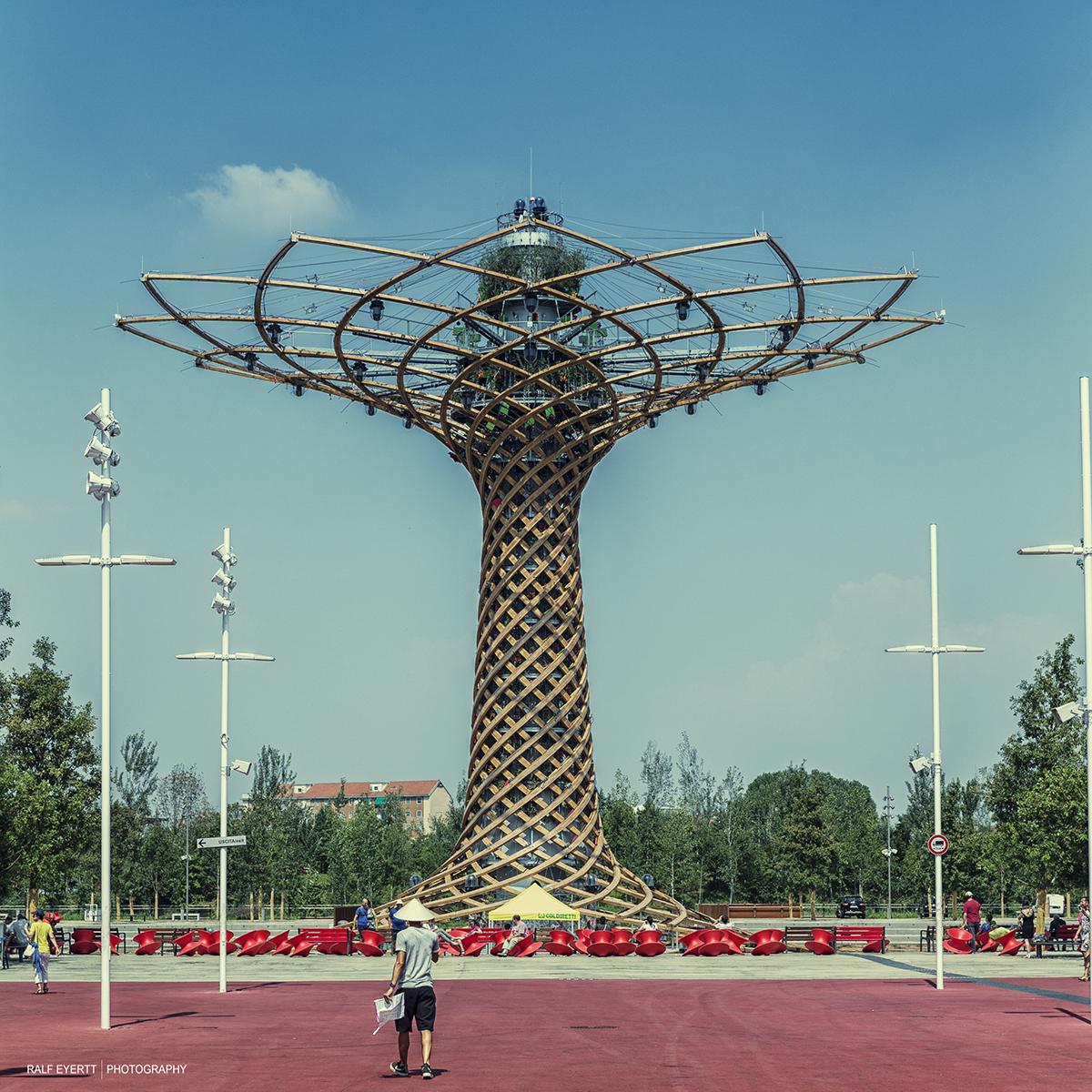 Das Symbol der Expo 2015.. Der Baum des Lebens