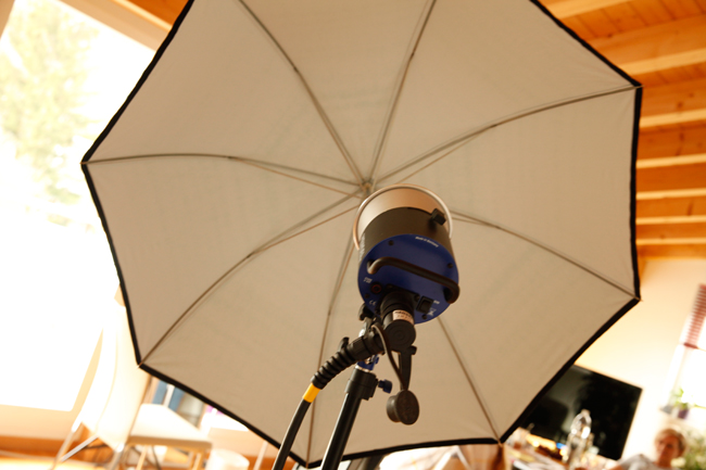 the flat umbrella reflector to light up shadows
