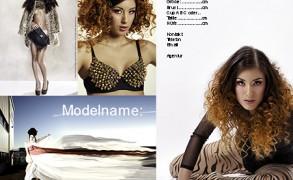 Modelbiz: Das Portfolio